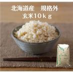 米 10kg「元年産 北海道米 白米10kg」送料無料 元年産100%規格外米