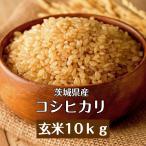 米10kg 玄米「2年茨城産 コシヒカリ 一等米 玄米 10kg」送料無料 新米