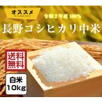 米 10kg「2年産 長野コシヒカリ中米 白米10kg」ブレンド米 送料無料