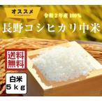 米 5kg「2年産 長野コシヒカリ中米 白米5kg」ブレンド米 送料無料