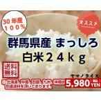 【28年産】 北海道 まっしろ ブレンド 白米 27kg 米