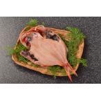金目鲷 - 金目鯛 1枚 肉厚 脂のり抜群 祝い事 干物