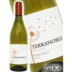 チリ 白ワイン テラノブレ シャルドネ 750ml / テラノブレ ギフト プレゼント