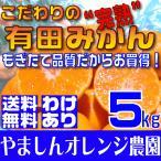 橘子 - (送料無料)(訳あり わけあり ワケアリ)こだわりの完熟有田みかん 5kg もぎたて農家直送