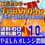 橘子 - (送料無料)(訳あり わけあり ワケアリ)こだわりの完熟有田みかん 10kg もぎたて農家直送
