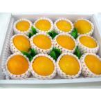 雅虎商城 - オレンジ 12個入り