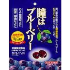 川口製菓  100g瞳はブルーベリー 10袋x2
