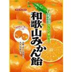 川口製菓 100g和歌山みかん飴 10袋入