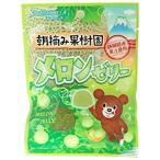 八雲製菓 45g朝摘み果樹園メロンゼリー 8袋x6B