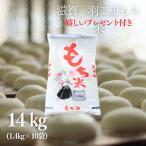 新米 もち米 1斗  14K  滋賀県産羽二重もち米  1.4kg×10袋 令和2年産