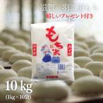 新米 もち米 10kg  滋賀県産羽二重もち米  1kg×10袋 令和2年産