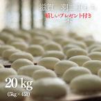 もち米 20kg  滋賀県産羽二重もち米 5kg×4袋 令和2年産 【送料無料】