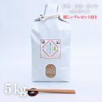 お米 新米 5kg  滋賀県 キヌヒカリ 令和2年産 玄米5kg 選べる精米