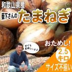 たまねぎ お試し!和歌山県産 特別栽培  薮下さんの 訳あり玉葱 2.5kg サイズ不揃い、ご自宅用