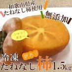 冷凍柿 冷凍たねなし柿 訳あり お試し 1.5kg 和歌山県産 たねなし柿使用 柿シャーベット 送料無料