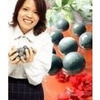 ゲルマボール ゲルマニウム温浴ができるゲルマニウム温浴ボール 10個 ゲルマ温浴ボール