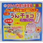 うんチョコ チーリン製菓 (1箱24袋入り) (グレープチョコ) 第15弾 ※宅配のみ※