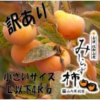 訳アリ会津みしらず柿小さいサイズ Lサイズ以下(20個前後)4kg  福島県会津若松市北御山「ふくしまプライド。体感キャンペーン(果物/野菜)」