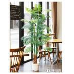 ショッピング観葉植物 人工観葉植物 アレカヤシ 立ち木 (H180cm) 1台 人工樹木