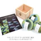 本 毛糸 ニットボウル セット 編み物 / ドイツ式だからすいすい編める ベルンド・ケストラーの引き返し編み リリナ&ニットボウルセット