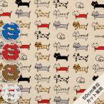 生地 キャンバス ねこ ネコ 猫 綿麻 柄 布 / 整列ねこ KTS3706 / 50cm単位