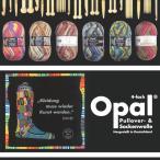 Opal Hundertwasser - オパール フンデルトヴァッサー - ただ編むだけで模様編みをしているような面白い編地に!個性的なカラフル靴下用毛糸