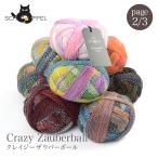 毛糸 輸入 ウール グラデーション / SCHOPPEL(ショッペル) Crazy Zauberball(クレイジーザゥバーボール) 2