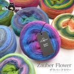 毛糸 輸入 ウール 100% グラデーション / SCHOPPEL(ショッペル) Zauber Flower(ザゥバーフラワー)
