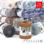 毛糸 セール まとめ買い 5玉 / TECHNO(テクノ)  ブライトニット麻 5玉セット 春夏