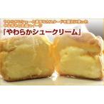 シュークリーム6種類セット・カスタード・抹茶・チョコ・ずんだ・黒胡麻・チーズ