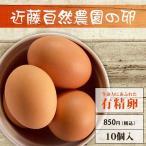 【有精卵】近藤自然農園の卵【10個入】