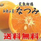 訳あり/希少な柑橘です!高糖度で美味しい なつみ 2.5kg