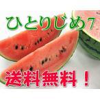 【送料無料】和歌山産の小玉すいか ≪ひとりじめ7≫2玉