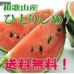 【送料無料】和歌山産の小玉すいか≪ひとりじめ7≫6玉入り(Lサイズ)
