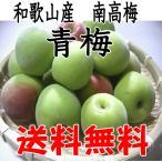 青梅(南高梅) 和歌山産 2L・3L 3kg /梅酒用・梅シロップ用【送料無料・クール代無料】