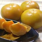 本場和歌山産 柿の王様 富有柿 大きな2Lサイズ 15個 【送料無料】