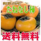 和歌山産 たねなし柿 Lサイズ 12個 【送料無料】