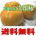 カリッと美味しい次郎柿 L/2Lサイズ(15〜18個)送料無料 和歌山産/愛知産