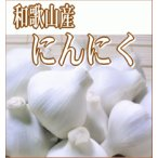 和歌山産/訳あり 生にんにく約1kg(12〜24玉)国産ニンニク