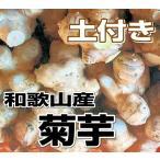 其它 - 送料無料 和歌山産 菊芋(キクイモ)生 1kg(土付き) テレビで話題のスーパーフード