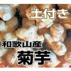 其它 - 送料無料 和歌山産 菊芋(キクイモ)生 3kg(土付き) テレビで話題のスーパーフード