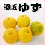 国産(和歌山産)柚子/ゆず 1Kg 訳あり【本ゆず・花ゆず】