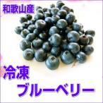 安心国産の冷凍ブルーベリー 500g 【和歌山県産】 冷凍便