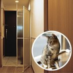 愛猫の安全を守る、猫脱走防止パーティション