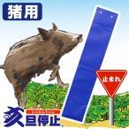(亥旦停止)いったんていし/ 猪(いのしし)用20枚(イノシシ対策)イノシシ撃退