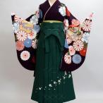 二尺袖着物袴フルセット  絹の様な合繊 卒業式にどうぞ!新品(株)安田屋 v478409646