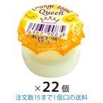 ヨーグル オレンジ味 22個 まとめ買い ダイケン