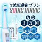 ソニックマジック UV除菌 電動歯ブラシ 専用ブラシ4本付 音波電動歯ブラシ 音波歯ブラシ 替えブラシ