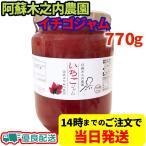 木之内農園 阿蘇高原のいちごジャム 1kg 国産 熊本 阿蘇 イチゴ ジャム 朝食