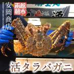 本タラバガニ ( 活タラバガニ ) 1.3kg